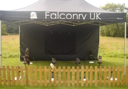 Falconry UK Birthday Parties