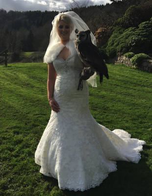 falconry uk wedding