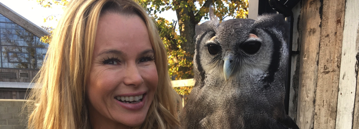 falconry uk amanda holden